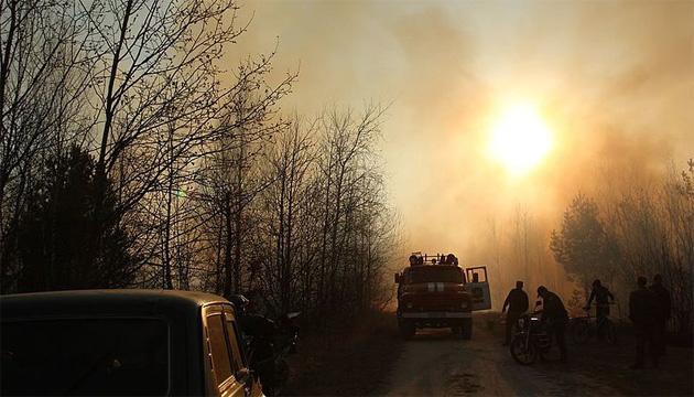 На Житомирщині гасять лісову пожежу