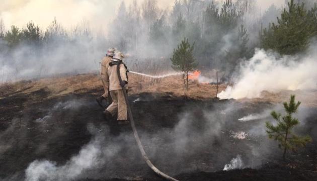 Пожежі на Житомирщині: люди, які втратили житло, отримають по 300 тисяч