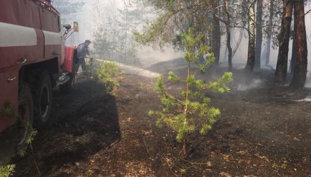 На Житомирщині більше тижня гасять масштабну пожежу у заповіднику