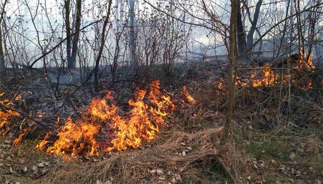 На Житомирщині горять понад 22 га торфовищ