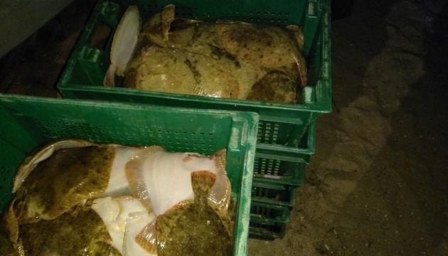 На Азовському морі затримали браконьєрів, які наловили риби на мільйон
