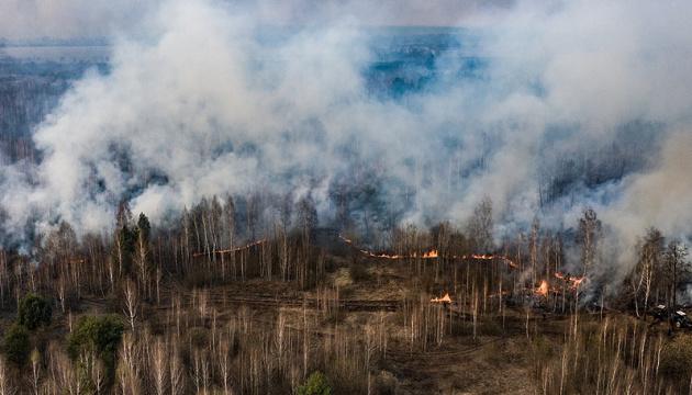 На Київщині та Житомирщині продовжують боротися з пожежами