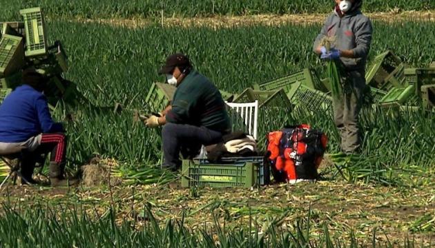 В Австрії фермер