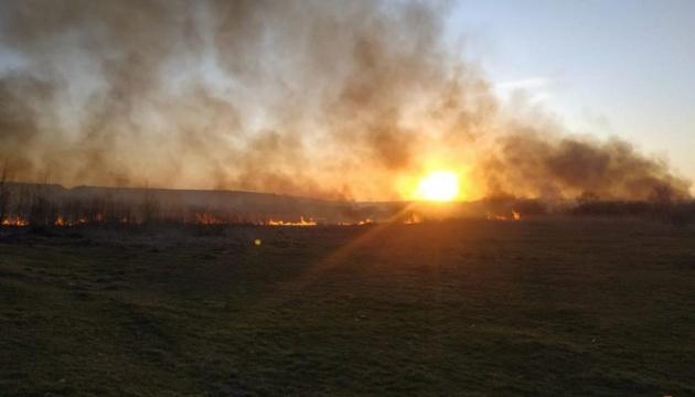 Під Тернополем ліквідували масштабну пожежу в орнітологічному заказнику