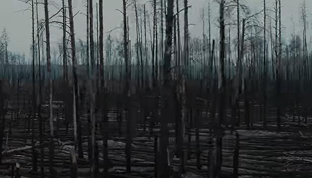 Война человека и природы: как выглядит Чернобыльская зона после пожаров