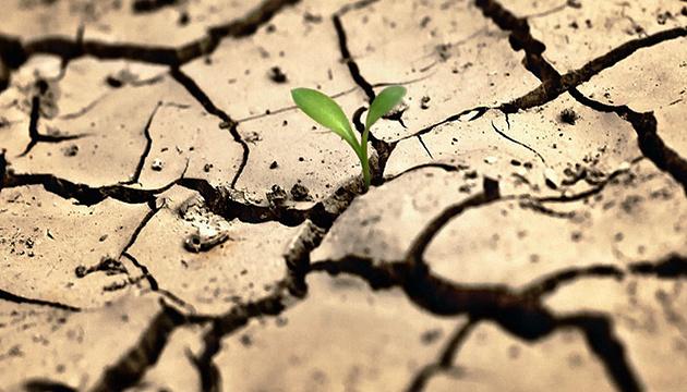 На Одещині фермери оцінили збитки від посухи у понад 570 мільйонів