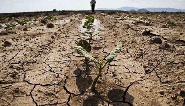 Во Франции июль стал засушливым месяцем за последние 60 лет