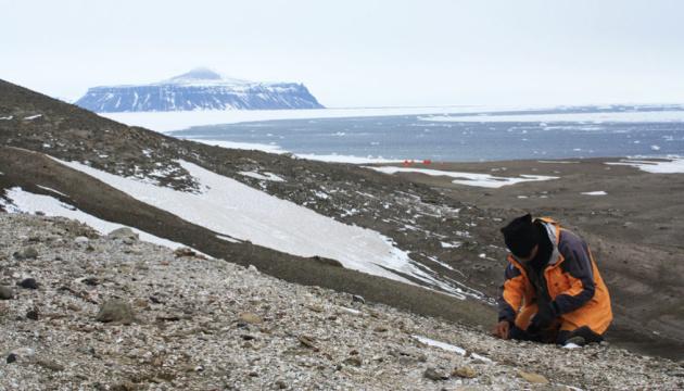 В Антарктиді вперше знайшли останки земноводних