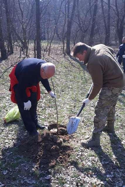 """Чернігівський ландшафтний парк """"Ялівщина"""" омолодився на майже 900 дерев"""
