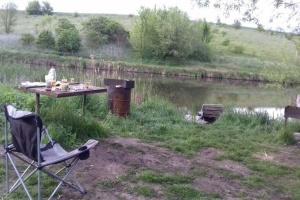 Seven people shot dead near pond in Zhytomyr region