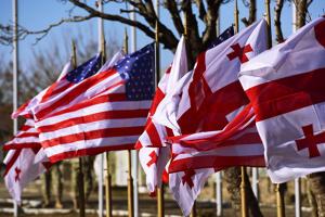 США запевнили Грузію у підтримці її територіальної цілісності та прагнення до НАТО