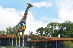 Новый приматник и ветклиника: какие изменения ждут столичный зоопарк
