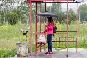Через дощі та вітер повітря у Києві стало трохи чистішим
