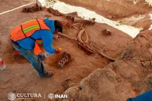 У Мексиці знайшли рештки 60 мамонтів