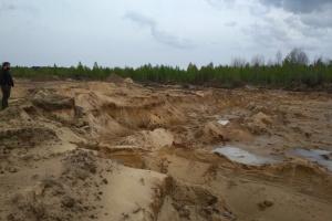 Убытки от незаконной добычи песка под Житомиром оценили почти в 5 миллионов