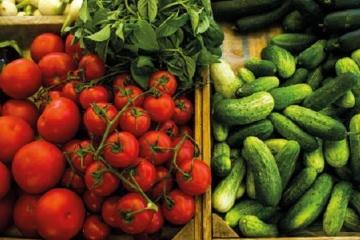Die Ukraine in Top 5 der fünf größten Exporteure von Agrarprodukten in die EU
