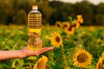Ucrania ha exportado un volumen récord de aceite de girasol