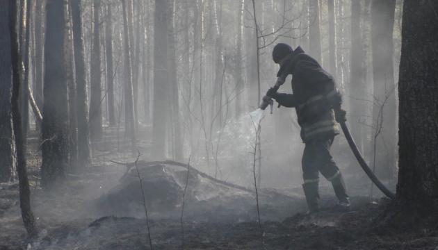 Лісову пожежу в Чорнобильській зоні ліквідували