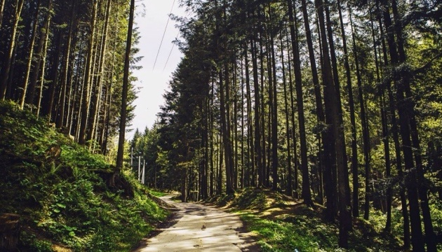 Сколівські Бескиди готуються до початку туристичного сезону