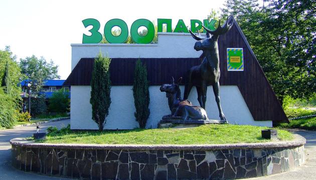 Рівне 11 травня відкриває ТЦ, крамниці, кіоски та зоопарк
