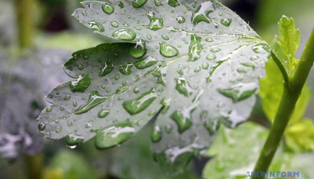 Синоптики прогнозують короткочасні дощі та до 18° тепла