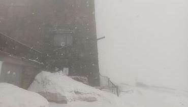 На горі Піп Іван у Карпатах знову випав сніг
