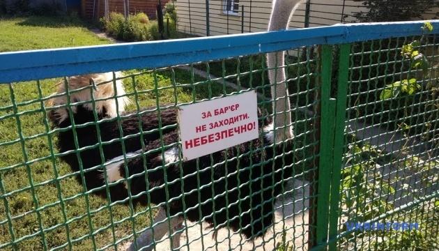 Менський зоопарк на Чернігівщині відновив свою роботу