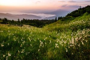 Топ-10 ідей для самостійних подорожей Закарпаттям