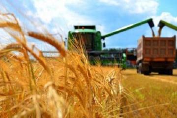 Spadek zbiorów zbóż o 10 mln ton nie będzie katastrofą dla Ukrainy - ekspert