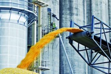 Getreideernte beträgt 65,4 Mio. Tonnen – Wirtschaftsministerium