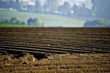 Ambasada USA z zadowoleniem przyjmuje przyjęcie przez Parlament Ustawy o użytkowaniu gruntów