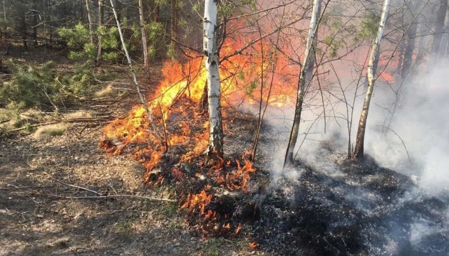 Weather forecasters warn of extreme fire hazard in six regions of Ukraine