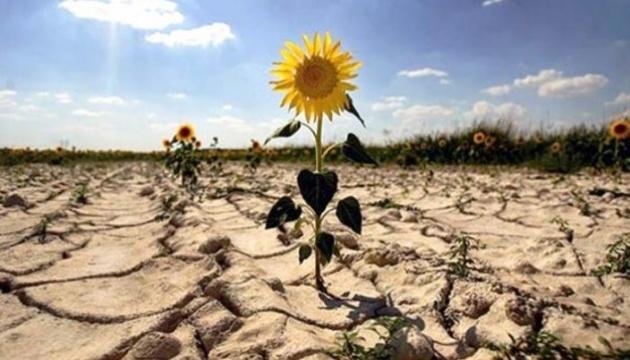Аграрії Одещини зазнали збитків через посуху на 6,5 мільярда