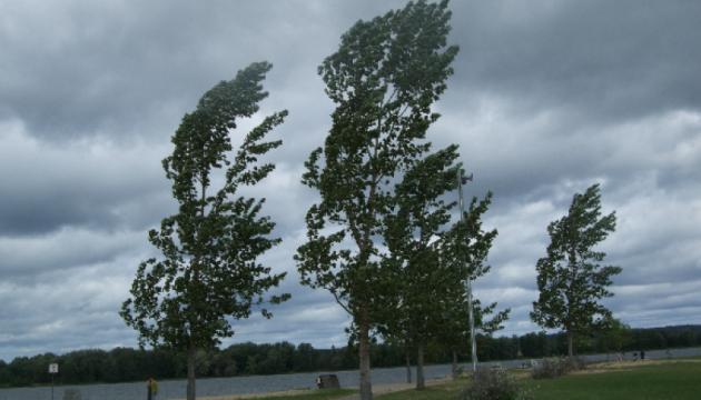 Se producen apagones en 209 localidades de Ucrania