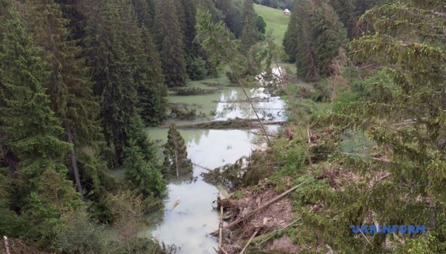 Через сильні зливи очікують підйом води у річках Закарпаття