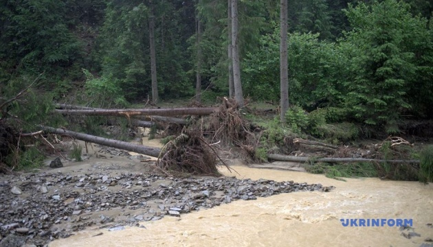 Кабмин выделил Буковине 432 миллионов для ликвидации последствий июньских паводков