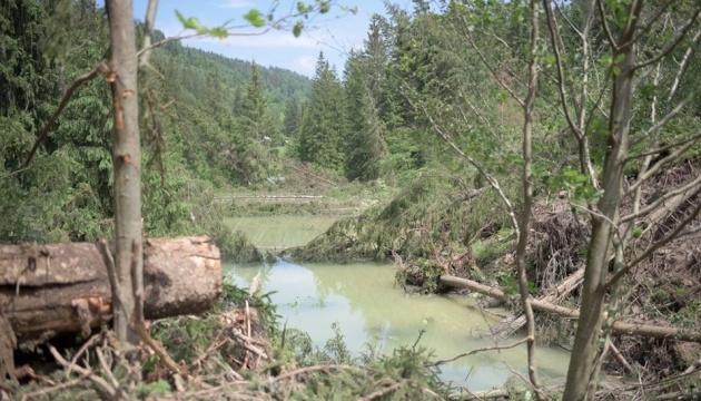 Паводок на Западе Украины: подтопленными остаются 12 населенных пунктов