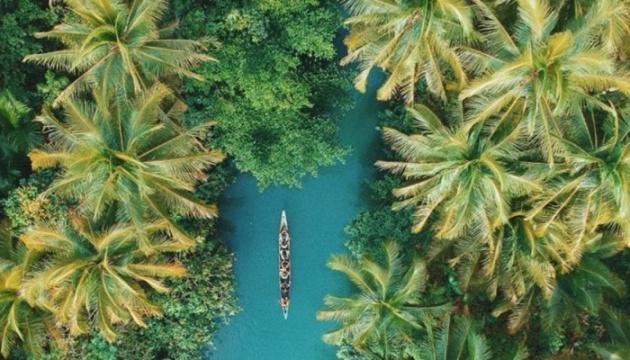 Aujourd'hui marque la Journée internationale des tropiques