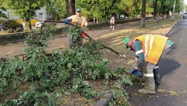 Негода у Маріуполі: повалені дерева, зупинився електротранспорт