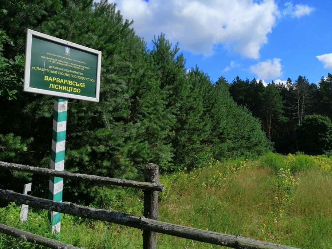 Новий екомаршрут покаже туристам різноманіття Малополіського Погориння