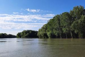 На Одещині рівень води у Дністрі досяг небезпечної позначки