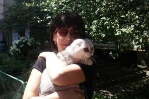 Два тижні під завалами: у будинку на Позняках врятували кішку