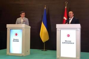 Киев и Анкара имеют потенциал к удвоению товарооборота - Чавушоглу