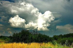 В Украине будет жарко, грозовые дожди - только в некоторых регионах