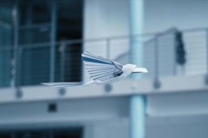 У Німеччині створили птахів-роботів