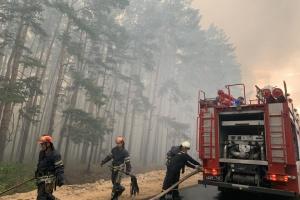 На Луганщині вирує лісова пожежа: евакуюють два селища
