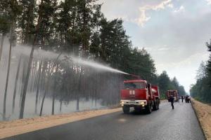 Лісова пожежа на Луганщині: одна людина загинула, дев'ятеро – у лікарні