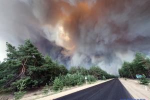Голова Луганської ОДА не виключає, що до пожеж міг призвести підпал