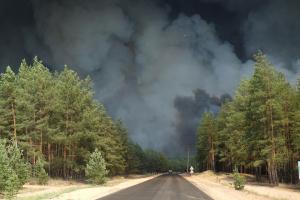 Глава ОДА просить визнати пожежі на Луганщині надзвичайною ситуацією державного рівня