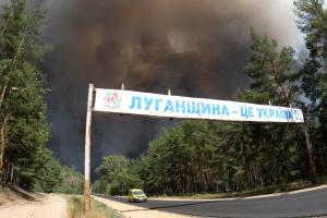 Пожежі на Луганщині: у лікарнях – 24 постраждалих, з них 15 дітей